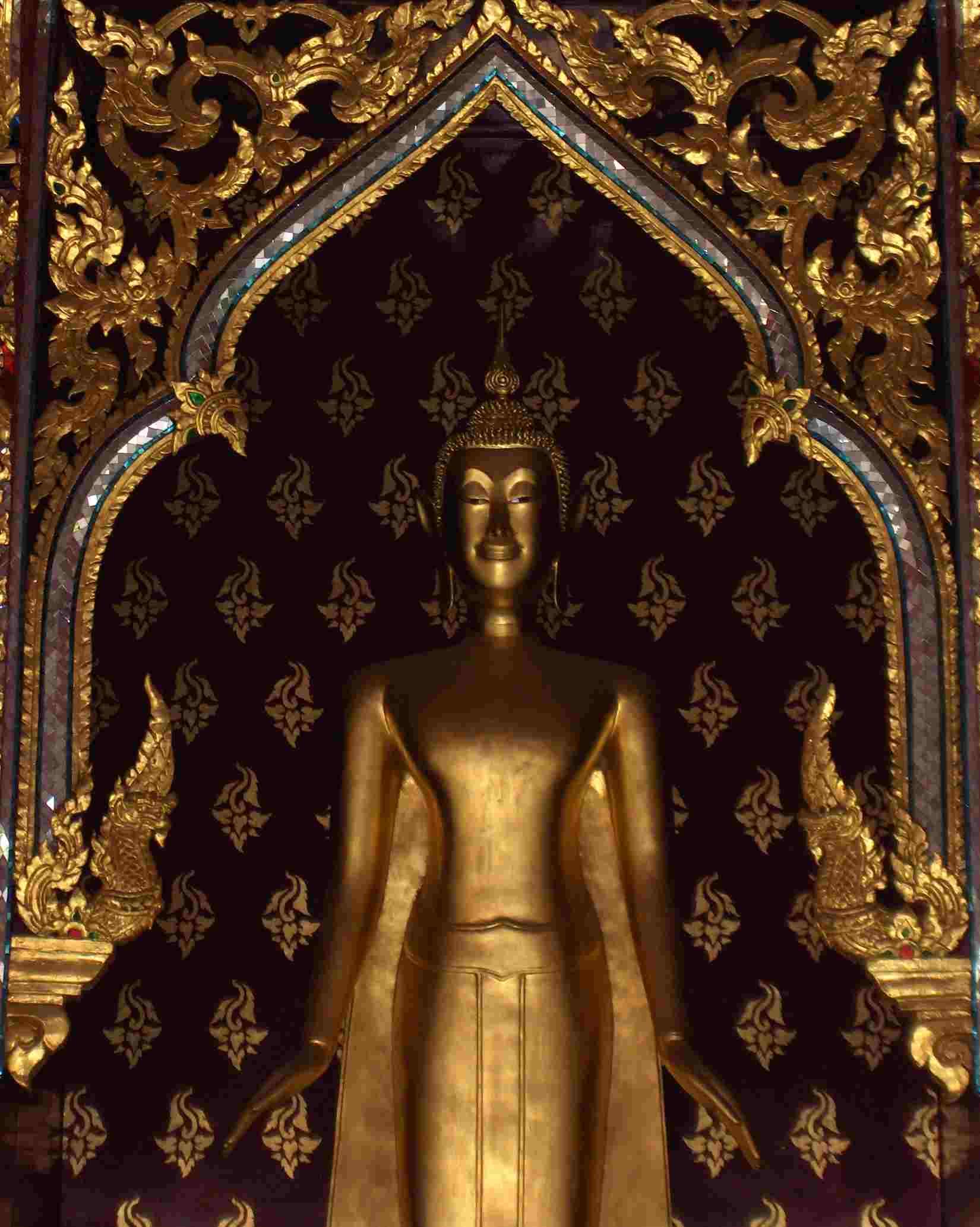 Mooie Citaten En Wijsheden : Boeddha wijsheden